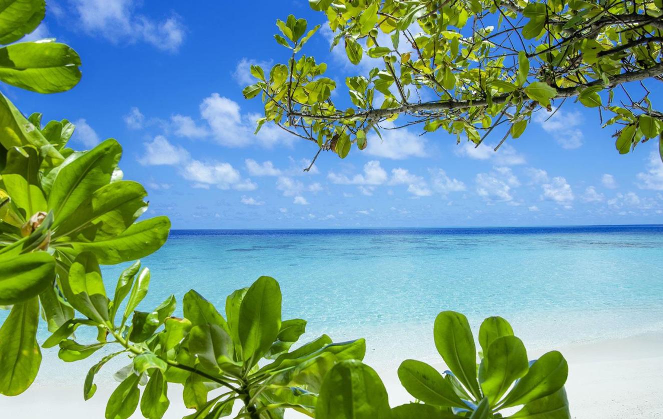 瓦卡库岛(小白马岛) Vakkaru Maldives ,马尔代夫风景图片集:沙滩beach与海水water太美,泳池pool与水上活动watersport好玩