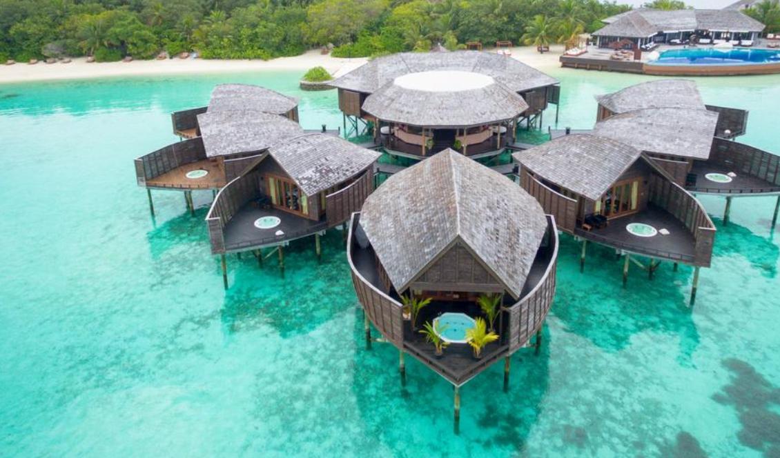maldives 莉莉岛|丽莉岛 Lily Beach Resort 漂亮马尔代夫图片相册集