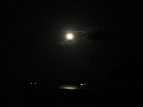 海上升明月