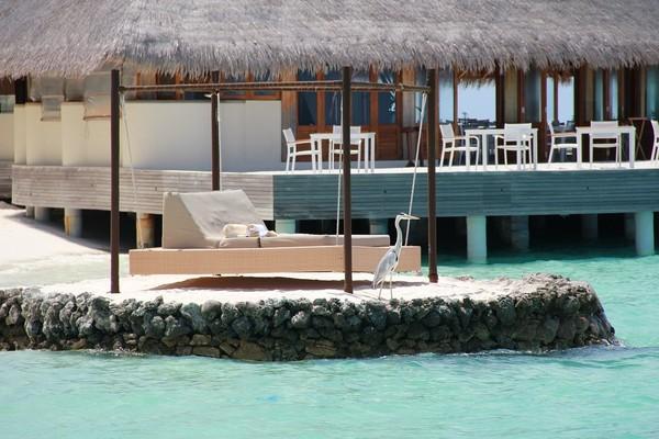 马尔代夫旅游攻略图片