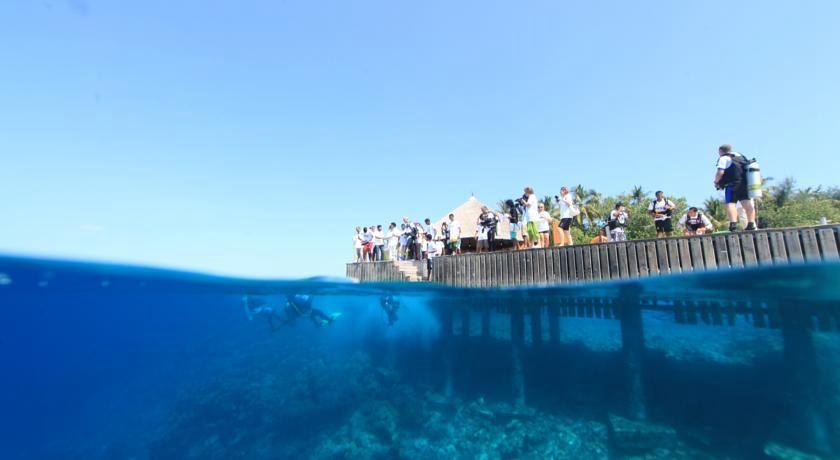 安莎娜伊瑚鲁岛 伊瑚鲁 Angsana Ihuru ,马尔代夫风景图片集:沙滩beach与海水water太美,泳池pool与水上活动watersport好玩