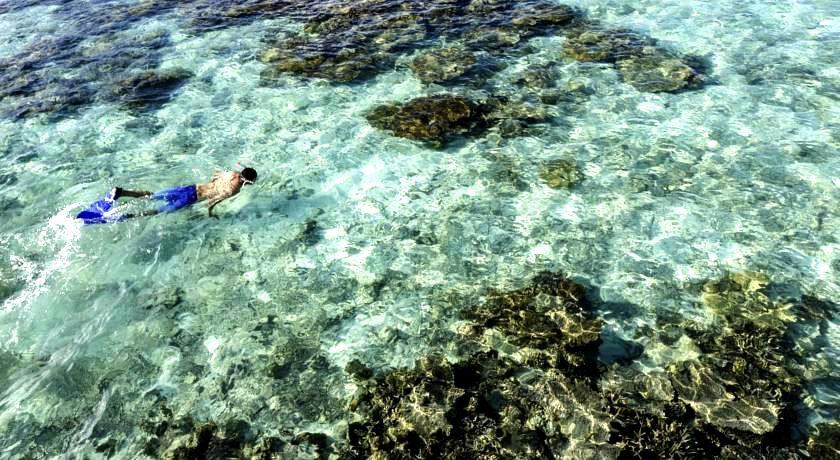 maldives AV岛|薇拉瓦鲁岛|海龟岛 angsana velavaru 漂亮马尔代夫图片相册集