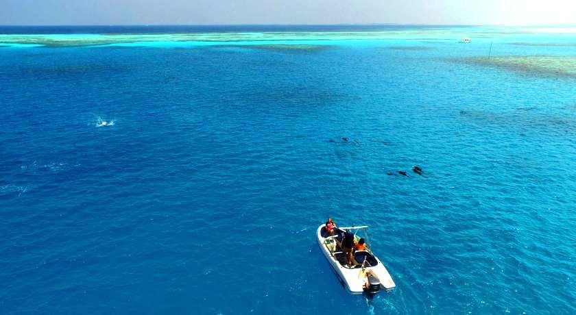 菲哈后岛 Fihalhohi Island Resort ,马尔代夫风景图片集:沙滩beach与海水water太美,泳池pool与水上活动watersport好玩