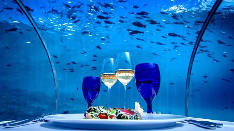 maldives攻略,  马尔代夫海底餐厅酒店有哪些? -百科-马尔代夫-专业代理-海岸线假期-唯一官方网站