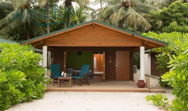 沙滩别墅-Beach Villas 房型图片及房间装修风格(美禄岛|蜜月岛 Meeru)海岛马尔代夫