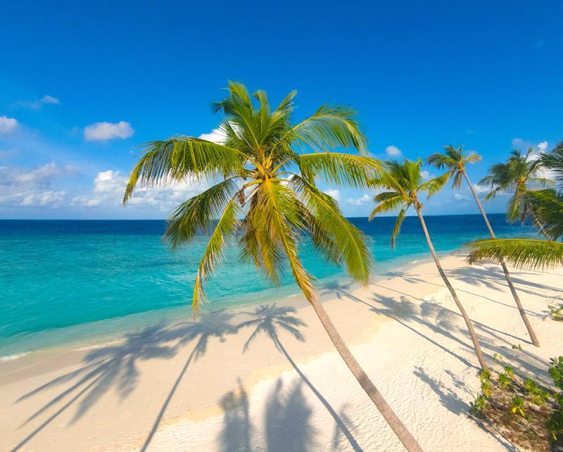 米莱度岛 Milaidhoo Island Maldives ,马尔代夫风景图片集:沙滩beach与海水water太美,泳池pool与水上活动watersport好玩