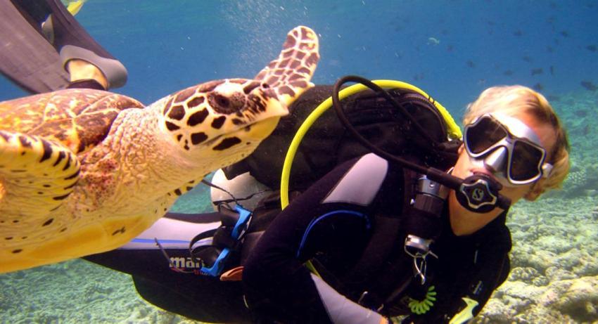 蕉叶岛 Vakarufalhi Maldives ,马尔代夫风景图片集:沙滩beach与海水water太美,泳池pool与水上活动watersport好玩